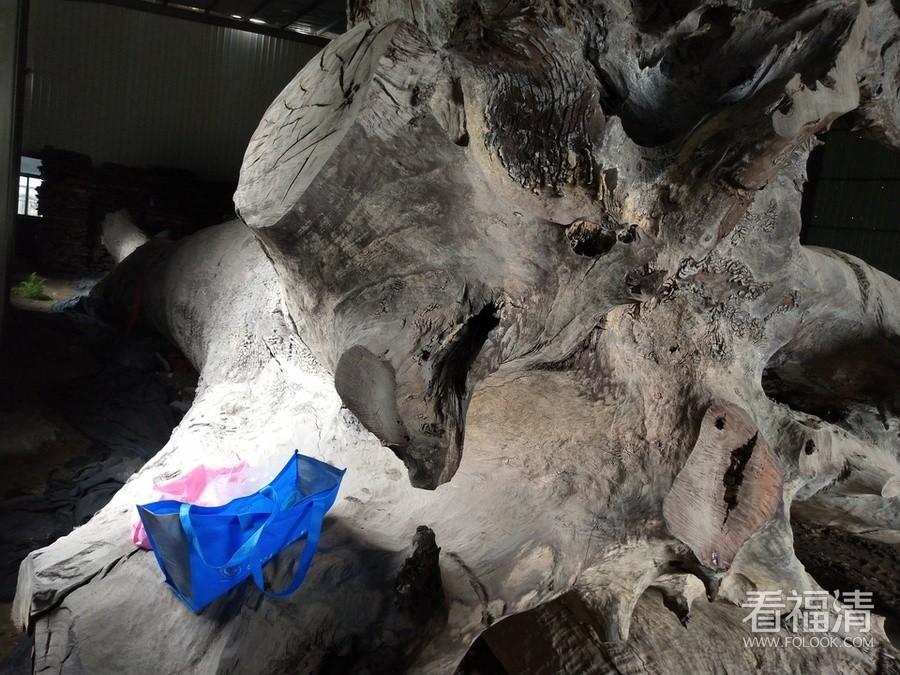 价值600万木头被查封