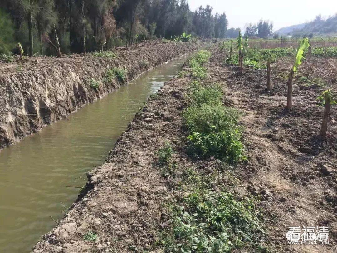 【全域综合治水】东瀚镇:打造渠畅水清的美丽乡村