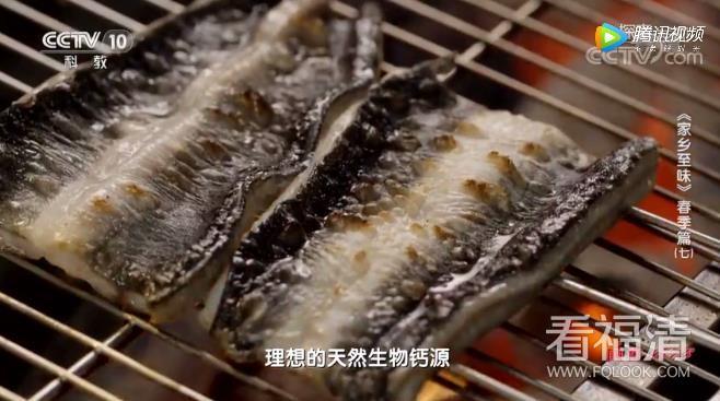 央视:福清鳗鱼业