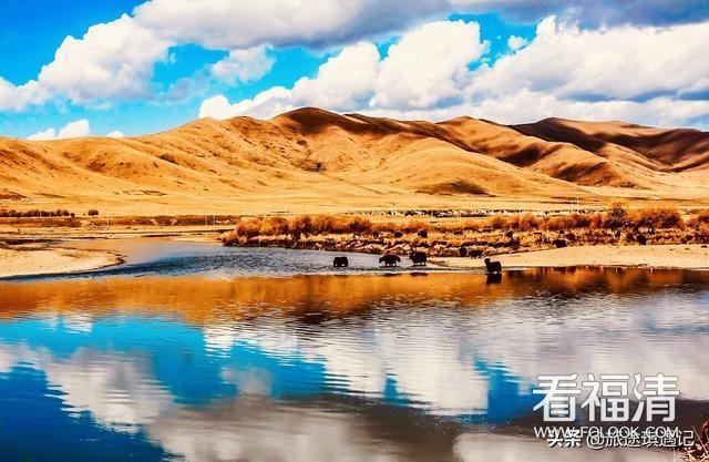 游玩西藏,切勿盲目冲动消费,几大坑多纪念品要谨慎购买