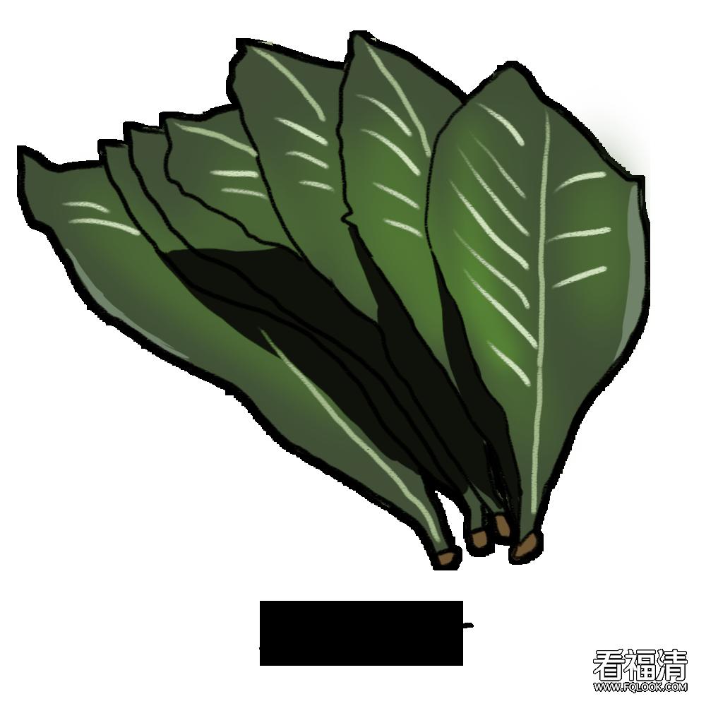 【药知道】枇杷树全身是宝,枇杷叶的清肺止咳功效你知道吗?