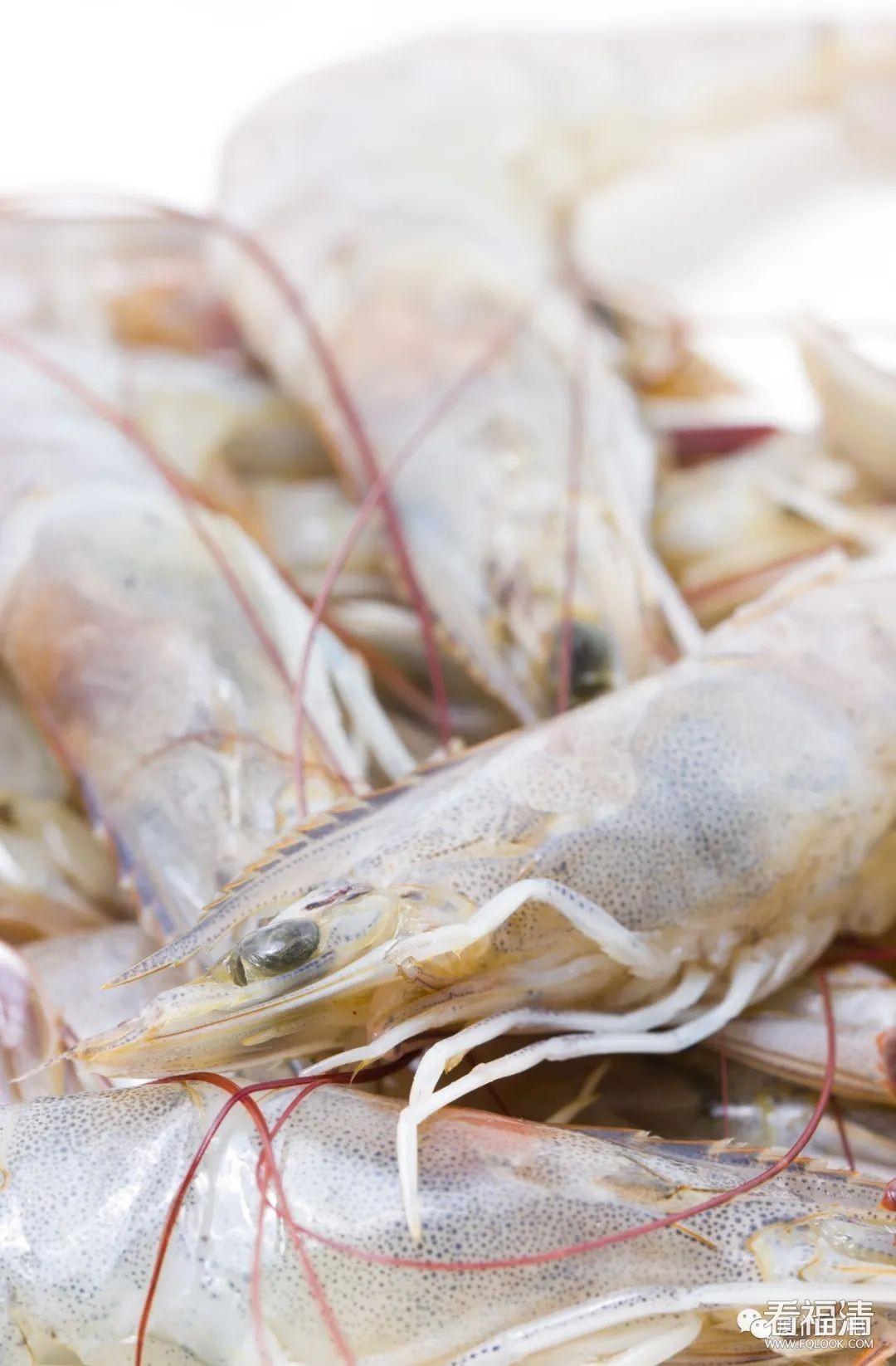 紧急提醒!厦门海关从进口冻虾外包装检出新冠病毒!