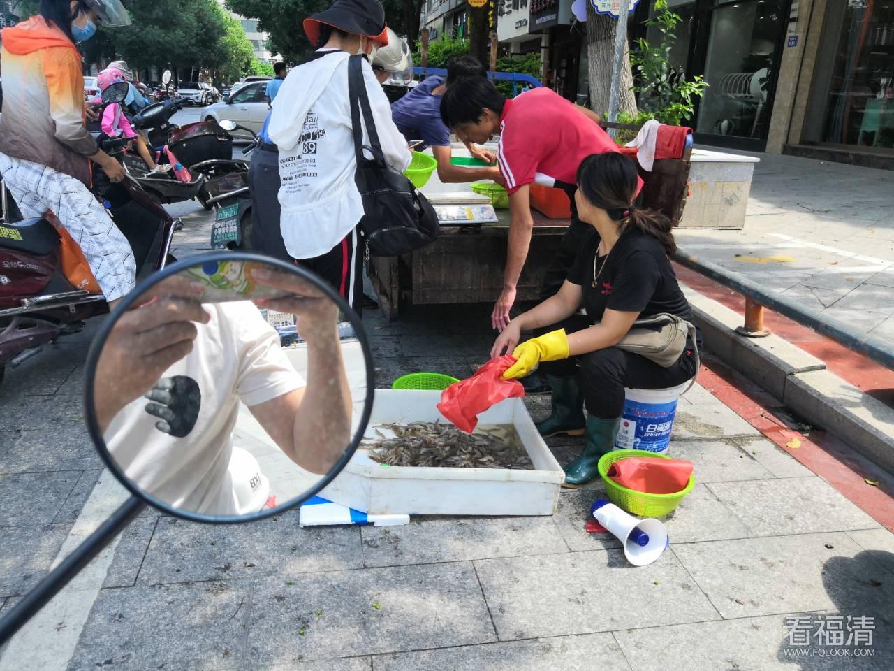 商展街(台湾街)街口,有一个海鲜摆地摊,有虾,螃蟹