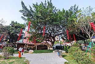 福清重修后的街心公园